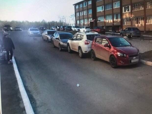 В Сыктывкаре собака спровоцировала ДТП с пятью автомобилями