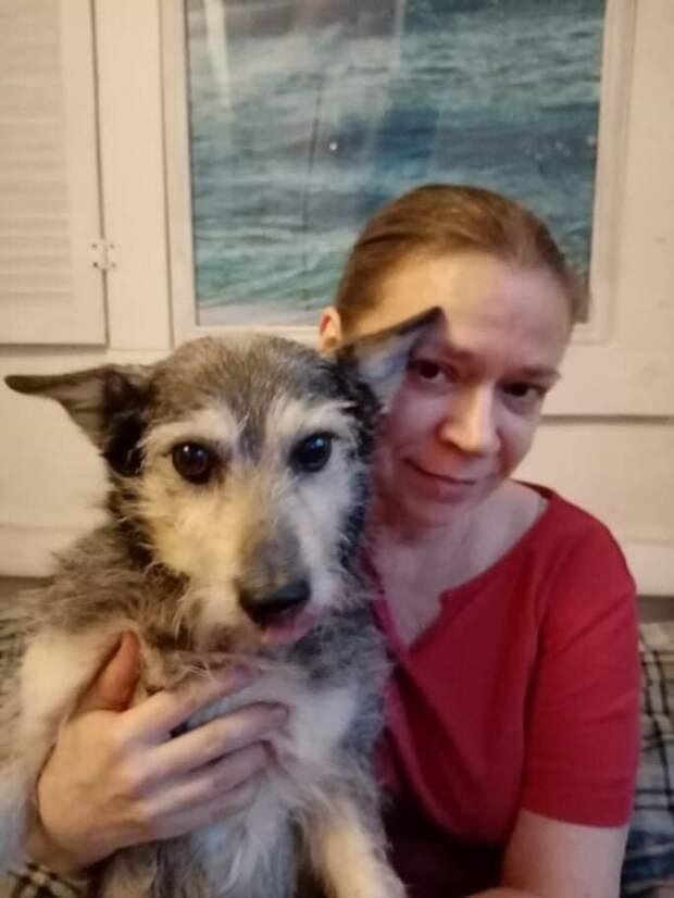 Познакомилась с собакой Паней, которая недавно спасла человека
