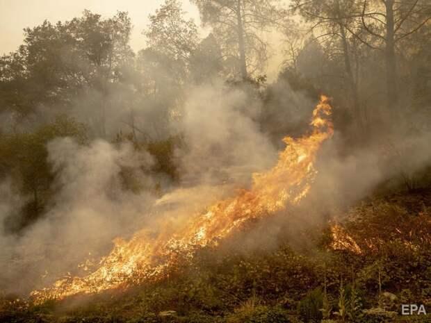 В США пылают почти сто пожаров, погибли десятки людей
