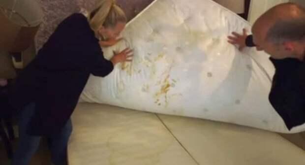 Хозяйка дома показала, как известный бьюти-блогер загадила ее дом