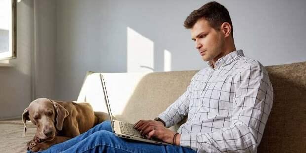 Новый онлайн-сервис помогает предотвратить покупку или аренду незаконных объектов в Москве