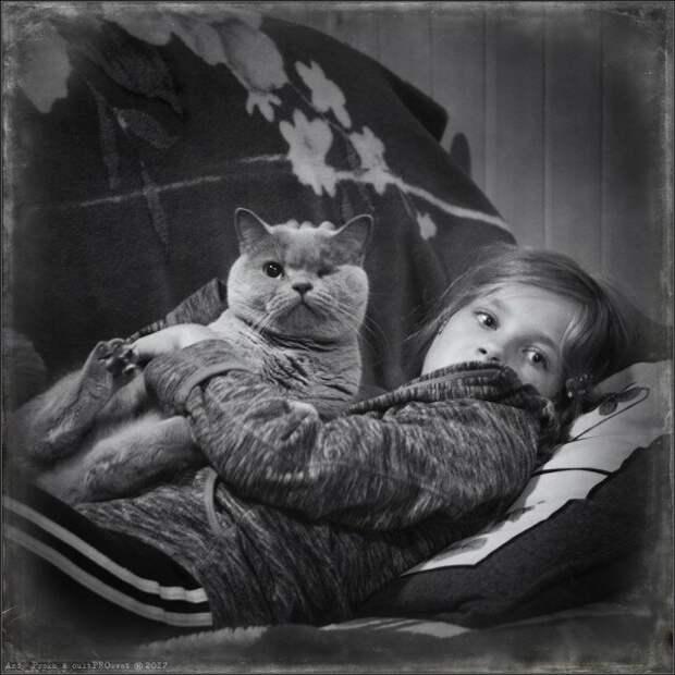 Котёнок из сугроба: бросьте, что вы с ним возитесь