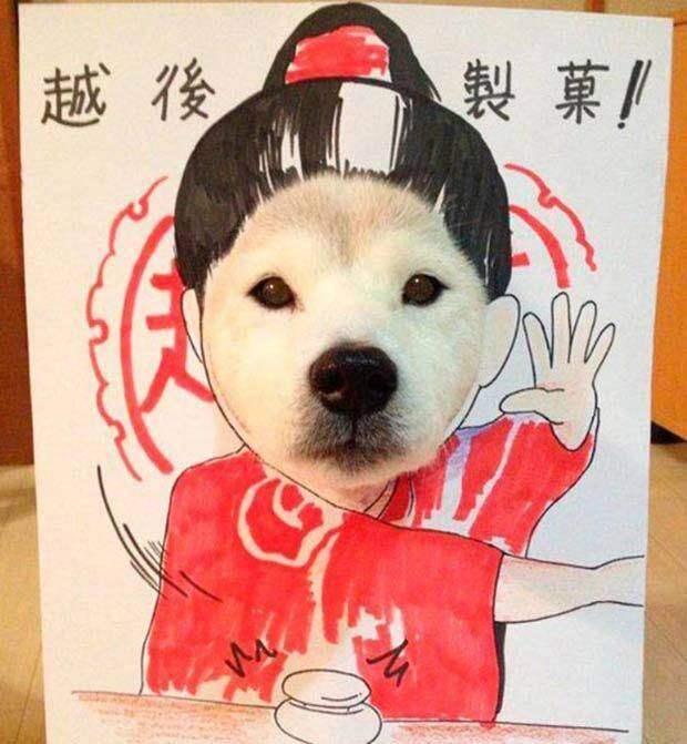 Собака и рисунок