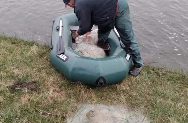 Пять человек уличены в незаконной ловле рыбы