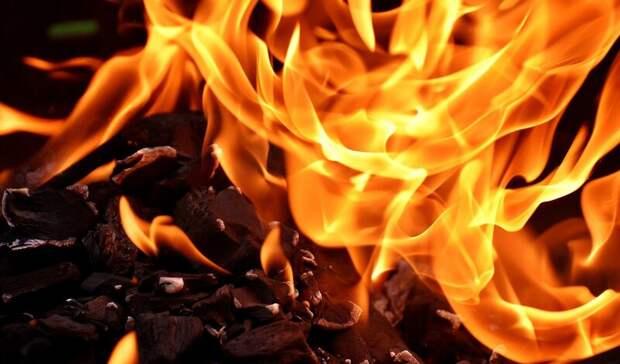 Женщина пострадала вовремя крупного пожара вРостовской области