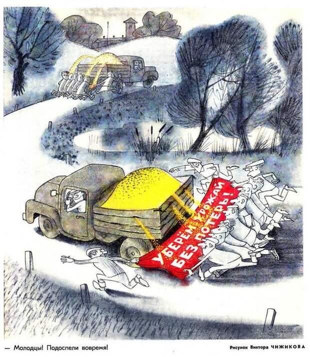 Правда и ложь об олимпийском Мишке. Как Виктор Чижиков придумал и нарисовал символ Олимпиады-80, фото № 16