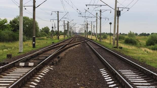Поезд насмерть сбил мужчину на перегоне Стрельна – Новый Петергоф