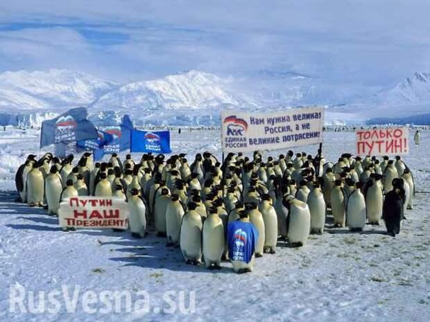 Шокирующий опрос в Киеве: Россия отобрала у Украины Аляску (ВИДЕО)