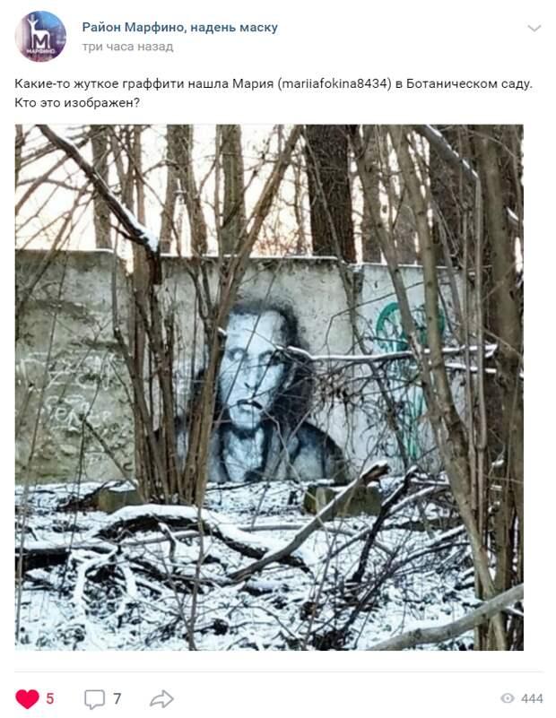 Граффити в Главном ботаническом саду напугало фотолюбительницу