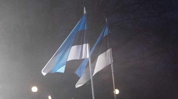 Надоело плясать под дудку США: Эстония хочет покинуть ЕС