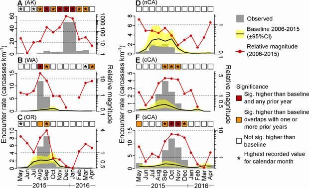 Среднемесячная интенсивность гибели кайр (трупов на км, серые столбцы) для разных участков побережья (A) Аляскинский залив, (B) штат Вашингтон, (C) Орегон, (D) северная Калифорния, (E) центральная Калифорния и (F) южная Калифорния. Черная линия - базовый уровень встречаемости в 2006-2015 гг., желтые заливки - его 95% доверительные интервалы, красные линии показывают относительную величину встречаемости в 2015/2016 годах по сравнению с базовым уровнем. Цветные квадраты показывают, была ли средняя за месяц частота встреч значимо выше базового уровня и была ли она значимо выше, чем за тот же месяц в предыдущие годы. Звездочки - средняя частота встреч в соответствующем месяце была самой высокой из когда-либо зарегистрированных