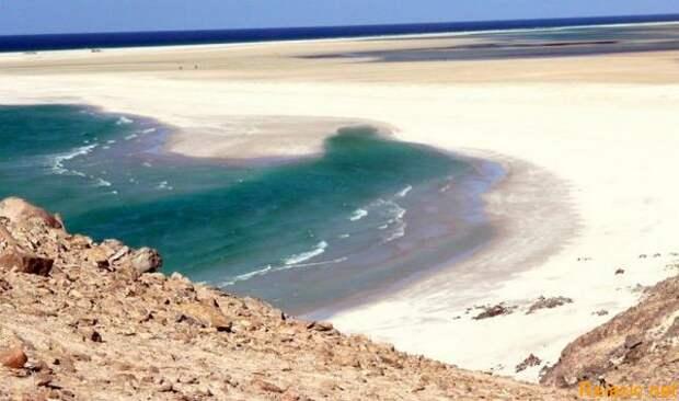 Socotra_005