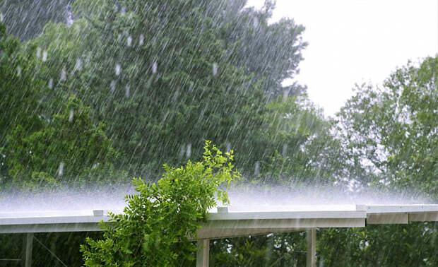 В Сочи ожидаются сильные дожди с грозой