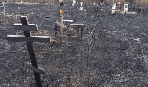 Администрация Богородска рассказала овосстановлении кладбища после пожара