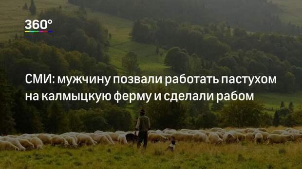 СМИ: мужчину позвали работать пастухом на калмыцкую ферму и сделали рабом