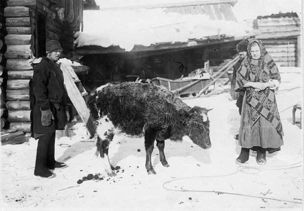 Фотографии сельских жителей Сибири.