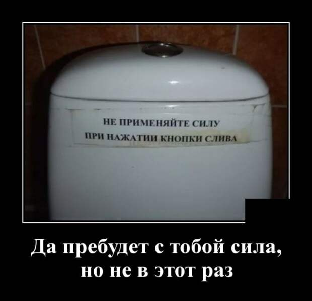 Демотиваторы про туалет
