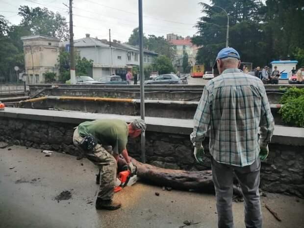 Все мосты в Ялте после схода селевых потоков осмотрят специалисты