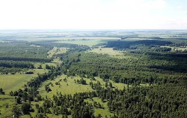 «Брошенный» гектар: Почему лучше отдать землю россиянам, а не узбекам