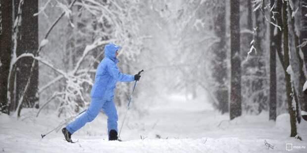 В парке «Кузьминки» стартует любительский лыжный забег