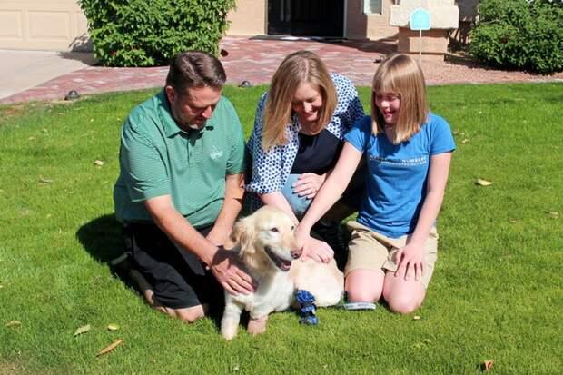 Собаке, спасенной с бойни, сделали протезы для ампутированных лап