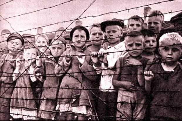 Закон не «для своих»: Великая Отечественная должна остаться Великой Отечественной
