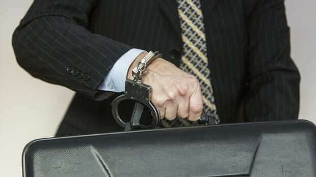 Приравнять коррупцию к предательству Родины: Михеев предложил жёстче бороться с ворами во власти