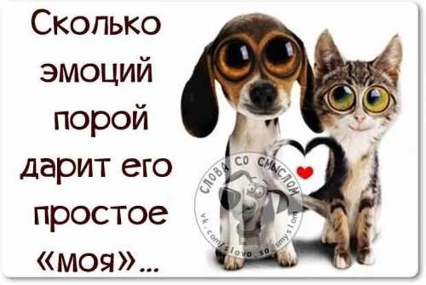 5402287_1425214639_voskresnovesenniefrazyvkartinkah18 (500x335, 21Kb)