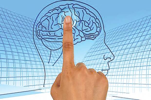 В МГУ провели эксперимент по распознаванию звуков мысленной речи