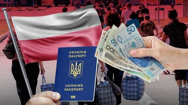 Украинцы в Польше: сколько зарабатывают, тратят, где ищут работу