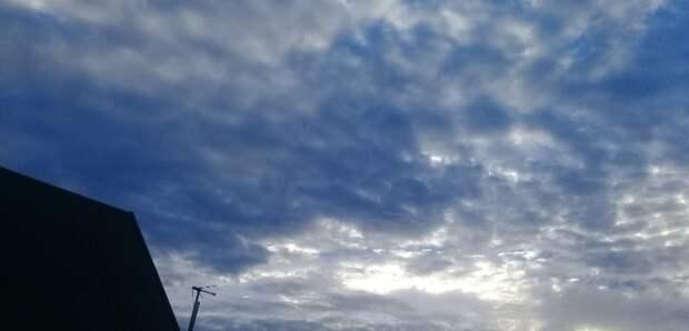 Дожди иветер. Какой будет погода вОренбуржье 24 и25апреля