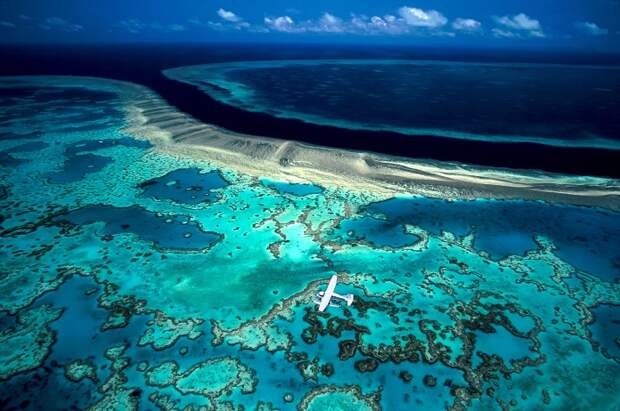 10 фактов о Большом Барьерном рифе
