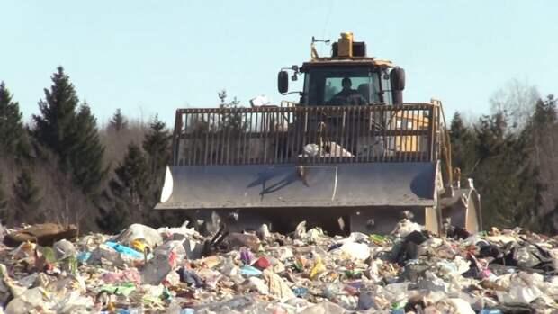 """В России создадут """"зеленые стандарты"""" для переработки мусора"""