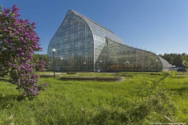 Одна из относительно новых оранжерей Ботанического сада.