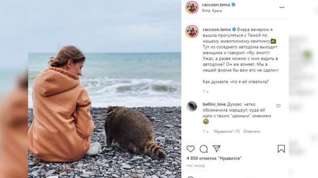 Самый знаменитый енот России покоряет побережье Черного моря