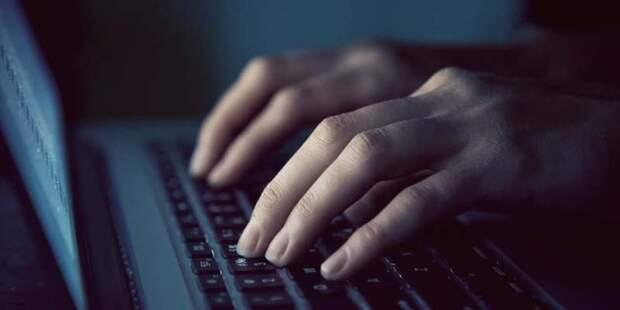 Власти объявили о старте регистрации на онлайн-голосование на выборы в Госдуму