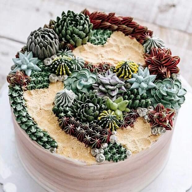 Съедобные суккуленты и кактусы Iven Kawi