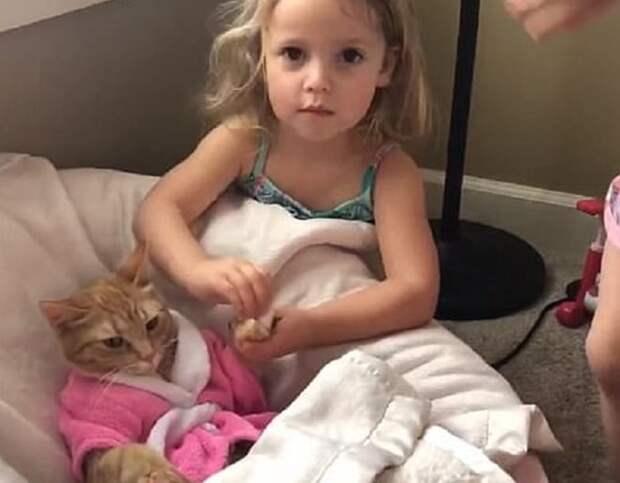 Кошка в кроватке