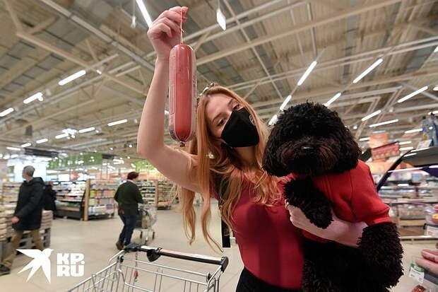 Покупатель даже с ротвейлером прав: Пускают ли в магазины с собаками и что про это говорит закон