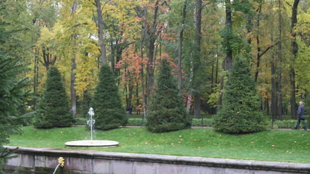 """Ученые из Челябинска помогут очистить воздух с помощью """"искусственных деревьев"""""""