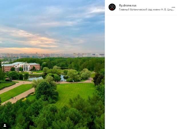 Фото дня: Ботанический сад с высоты птичьего полета