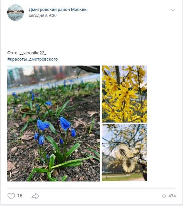 Фото дня: весна на Ангарских прудах