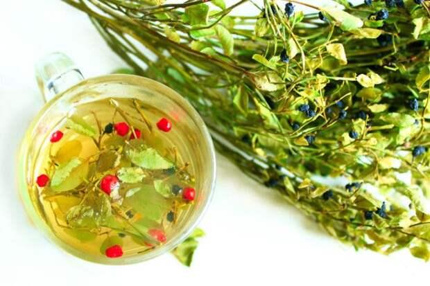 Какие травы добавить в чай, чтобы укрепить здоровье