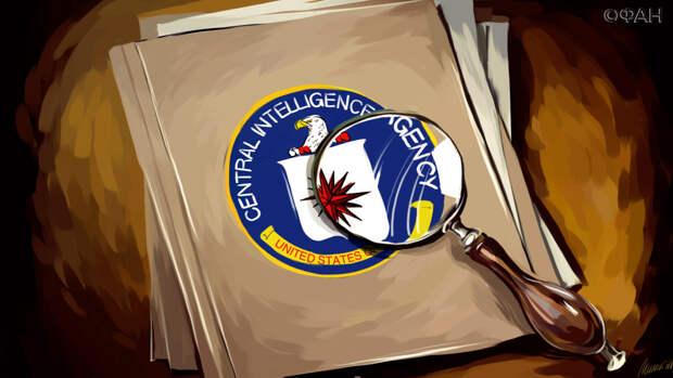 Певчих могла способствовать вмешательству МI6 и ЦРУ в дела РФ с 2011 года
