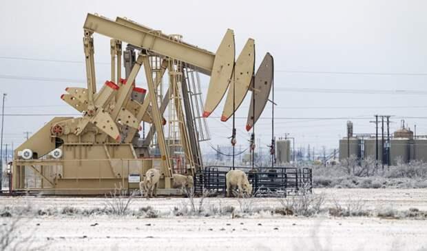 Техасские нефтяники пока несправились соснегом