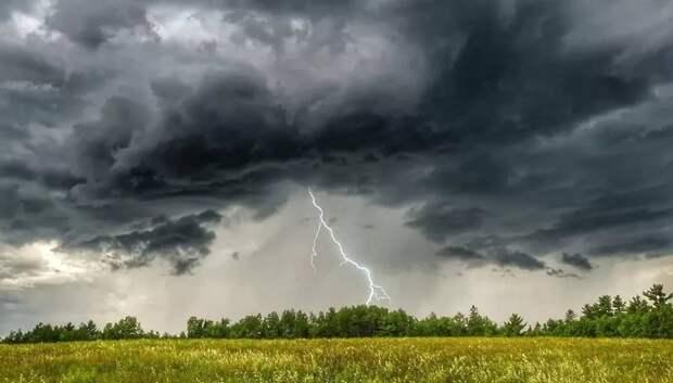 МЧС предупредило жителей Подмосковья о грозе и порывистом ветре