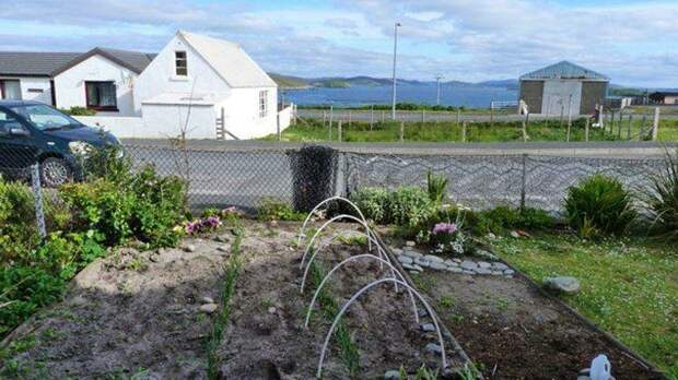 Женщина за три недели связала себе кружевной забор и заменила им старую сетку рабицу