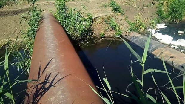 Голубев призвал ростовчан сообщить, кто загрязняет Темерник сточными водами