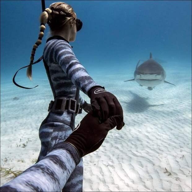 Если ей хочется познакомиться с акулой...