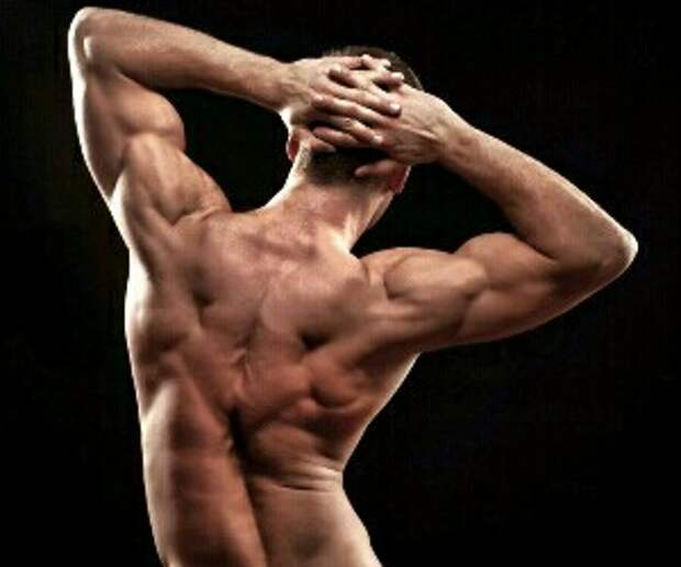 Тренируем спину